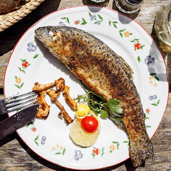 Heimische Fische in St. Georgen am Längsee