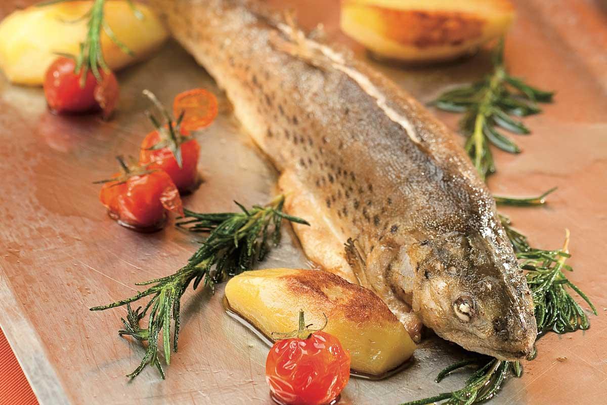 Heimische Fische direkt aus dem Längsee
